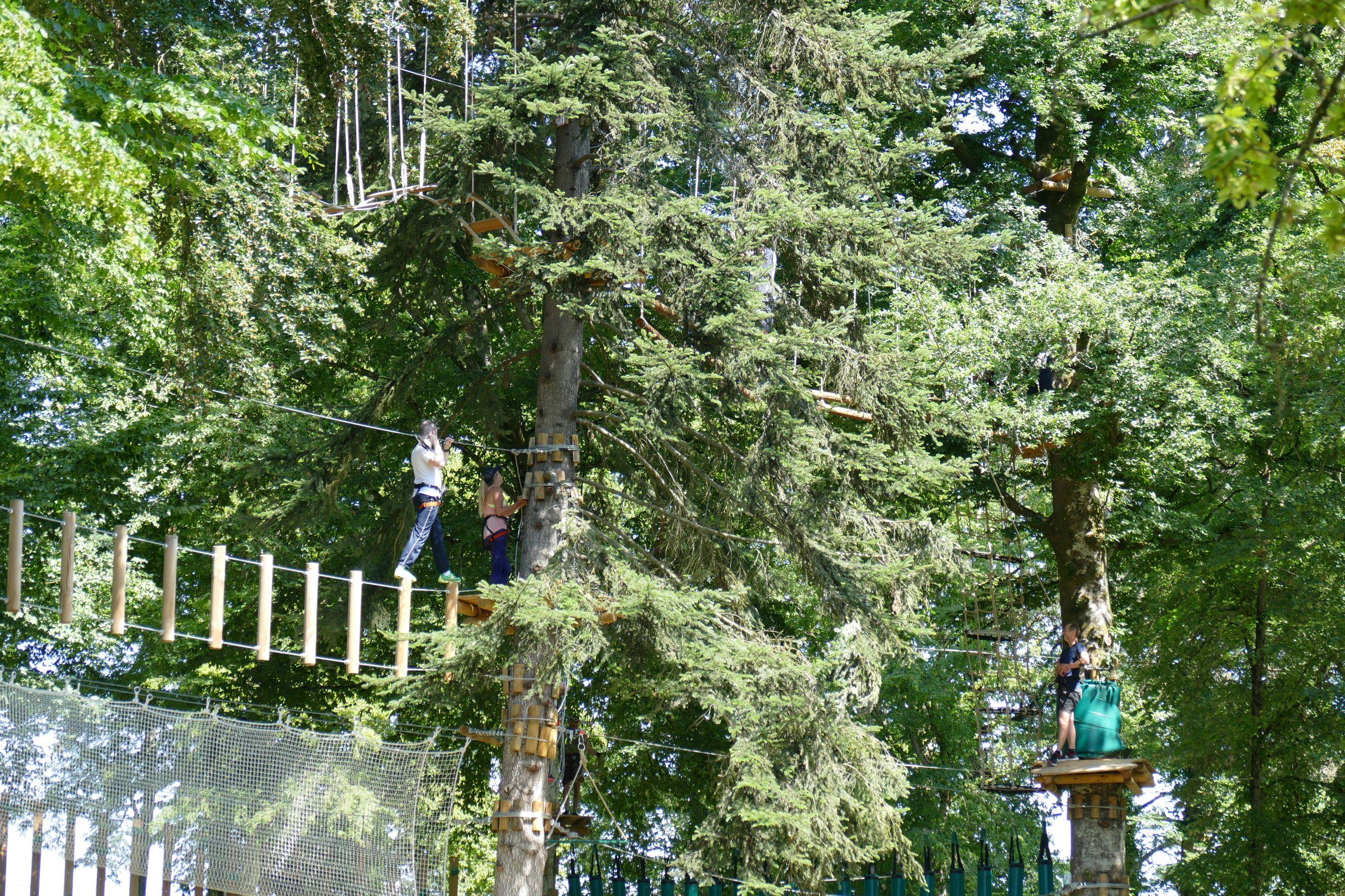 tyrolienne parc accrobranche louvemont